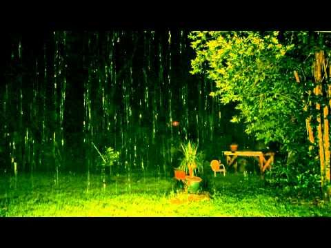 Rain - one of the most relaxing sounds of nature. Perfect for a Total SENSE Therapy session.