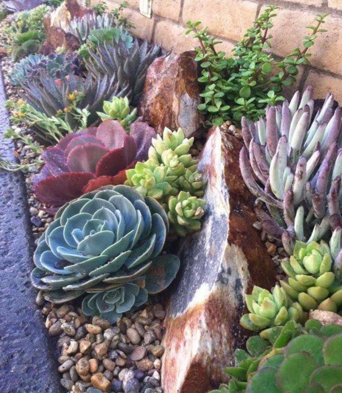 1000 id es propos de plantes de rocaille sur pinterest for Pinterest cuisine de jardin