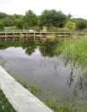 Boneo Maze & Wetlands Centre