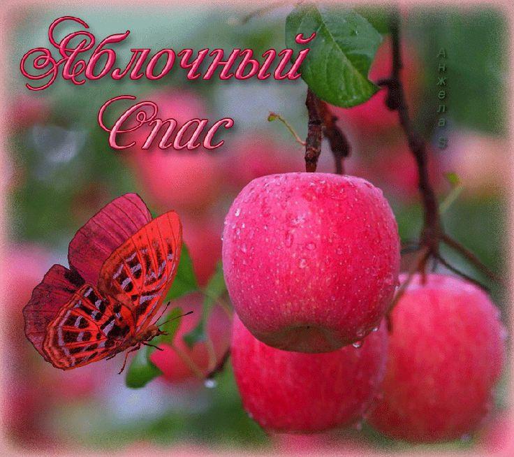 Яблочный спас красивые открытки