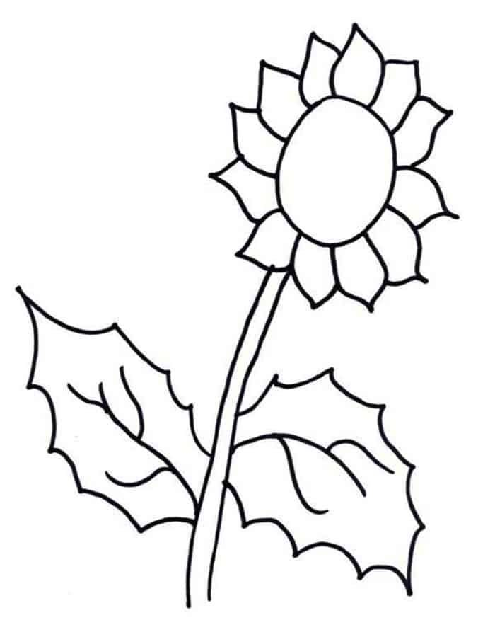Simple Sunflower Coloring Pages Sunflower Coloring Pages Fall Coloring Sheets Online Coloring Pages