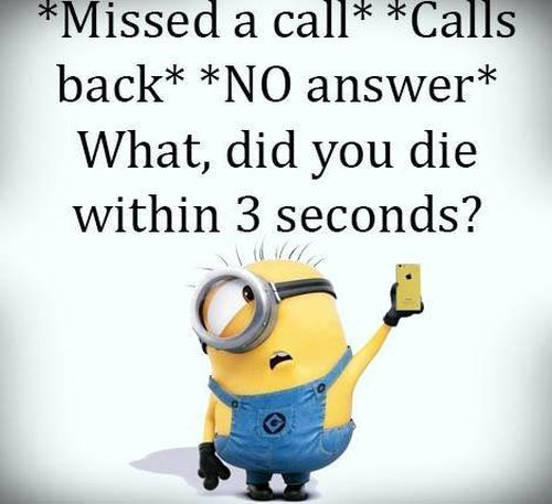 Funny Minions Quotes Of The Day