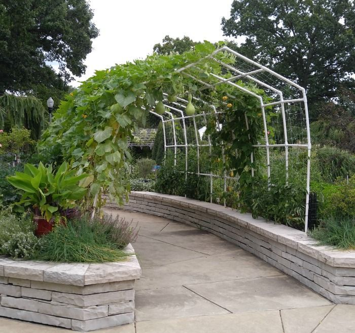 Garden Arbors And Arches To Give An Entry To Your Garden Setting Garden Arbor Metal Arbor Garden Set
