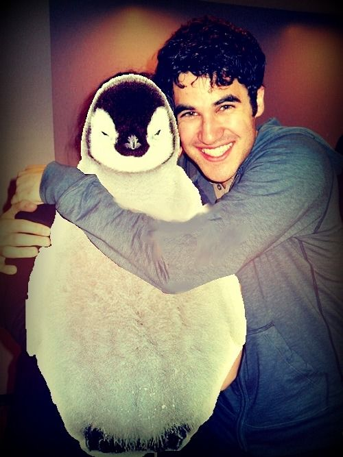 If Matt Damon were in this picture with Darren Criss and a baby penguin the world would explode from an overload of cute.  If I could be there, too, it wouldn't be a bad way to go.