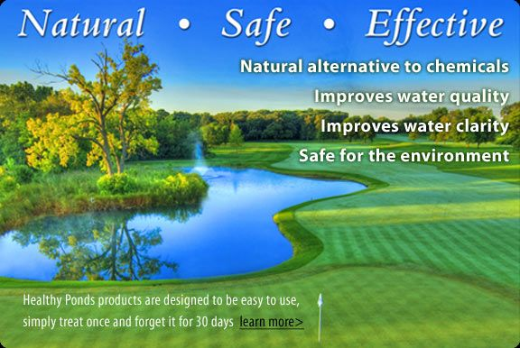 Bioverse natural pond cleaner algae control clean pond for Natural pond maintenance