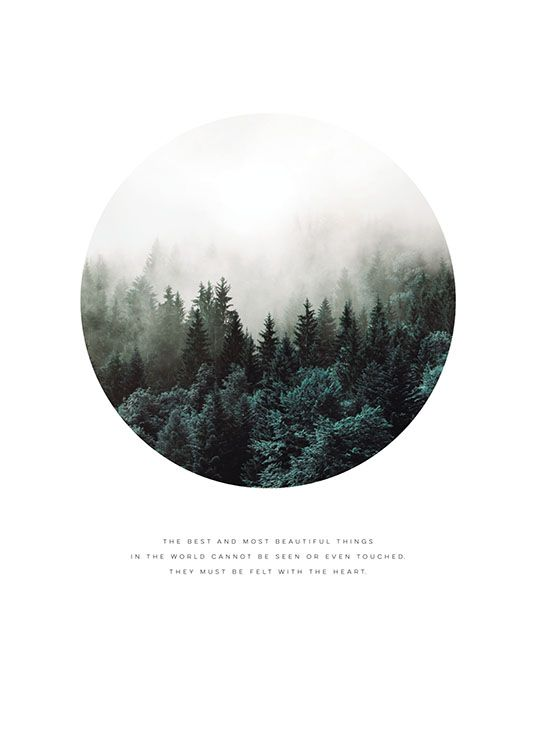Forest circle, poster