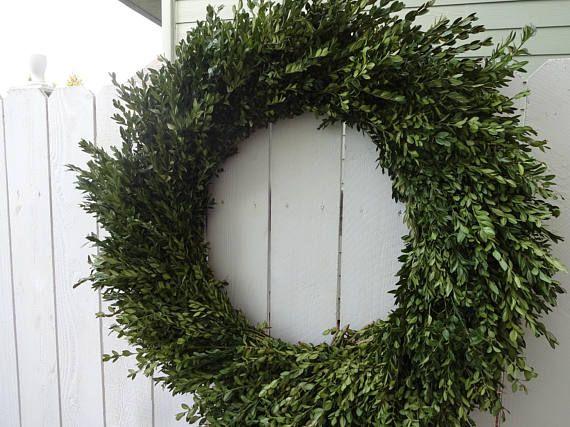 Check out this item in my Etsy shop https://www.etsy.com/listing/570075212/32-boxwood-wreath-boxwood-wreath-dried