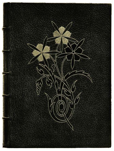 Illustration du livre L'Ornementation des reliures modernes (1889)de Marius Michel(1846-1925)père et fils. Wikimedia