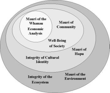 maori sustainability - Mauri of the environment