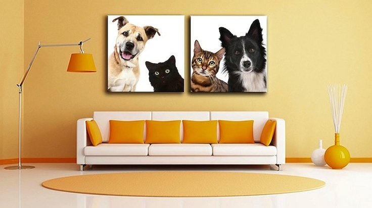 Win Win Deals! - Bring Your Photos to Life - $10 for 70% OFF Canvas Factory Photo to Canvas Prints!