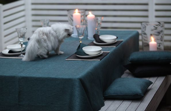 Cat on the table, kissa pöydällä. www.pisadesign.fi