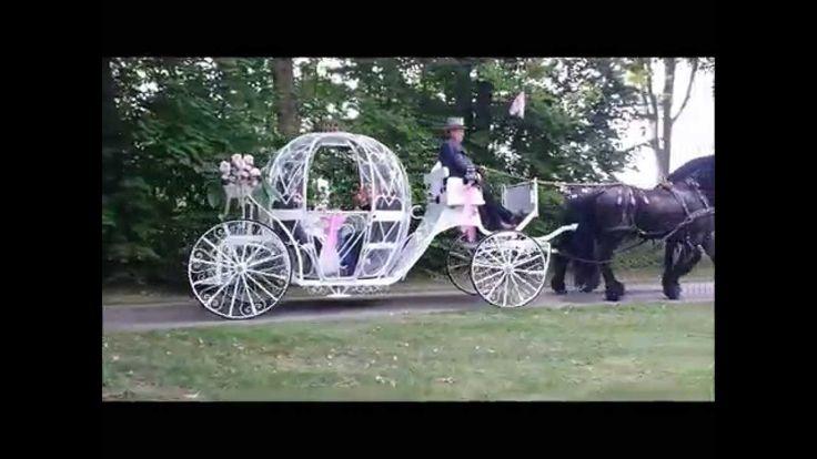 Cinderella Hochzeitskutsche 15  August 2015