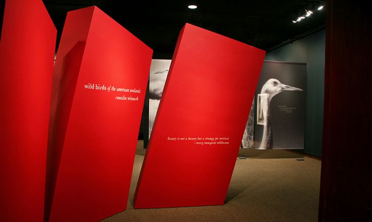 Allestimento Museo Utah di Storia Naturale