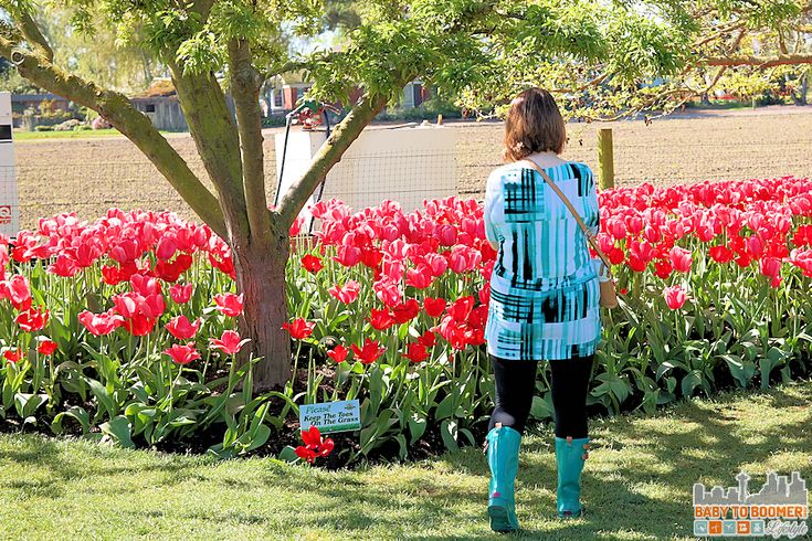 Keep Your Toes Grass Skagit Valley Tulip Festival 2016 - Spring and Fall 2016 Boot Trends: Western and Chooka Boots #TulipBoots ad