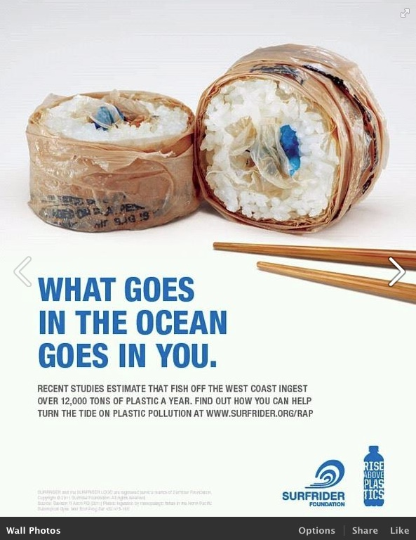 This photo really intrigued me to actually pin it because due to water pollution it kills many of our marine life. For all you sushi lovers this can really impact you on what really goes into your mouth