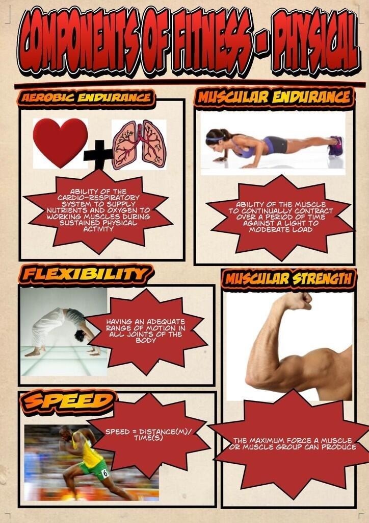 the physical components of fitness. defines a few physical aspects of being fit