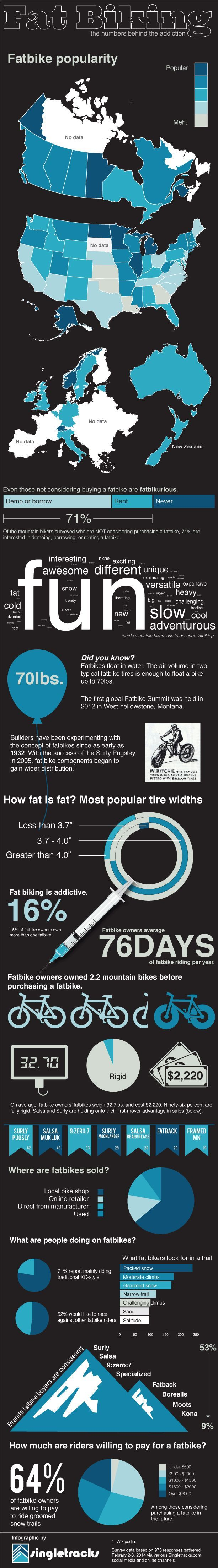 A fun infographic with some interesting facts about the growing popularity of fat bikes. #fatbike #bicycle