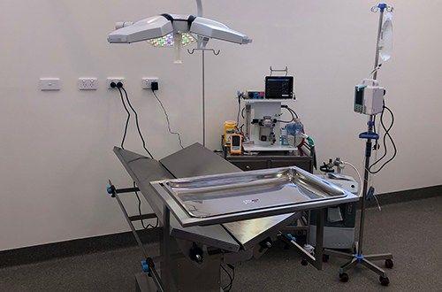 Clyde Veterinary Hospital Facilities At Selandra Blvd Clyde Nth