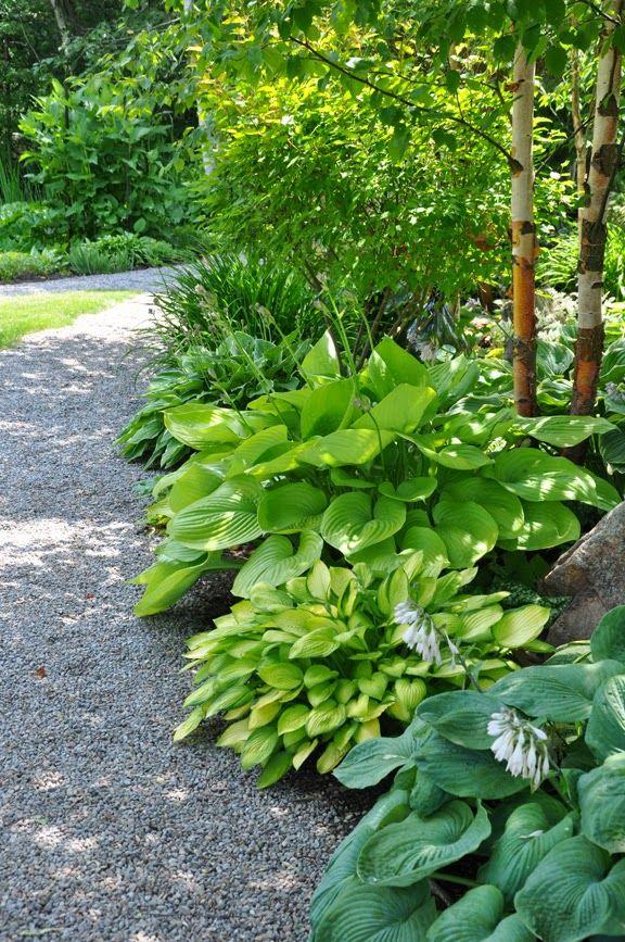 1334 Best In My Garden Images On Pinterest Hydrangeas Garden - shade garden design ontario