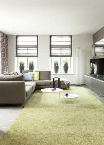 The sheer window blinds chosen for this #Fengshui living room offer a certain degree of privacy as well as making a stylish statement #interiordesign #blinds