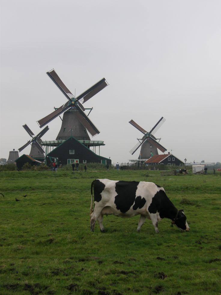 This is Holland - Volendam, Noord-Holland, Netherlands Copyright: fahri anafarta