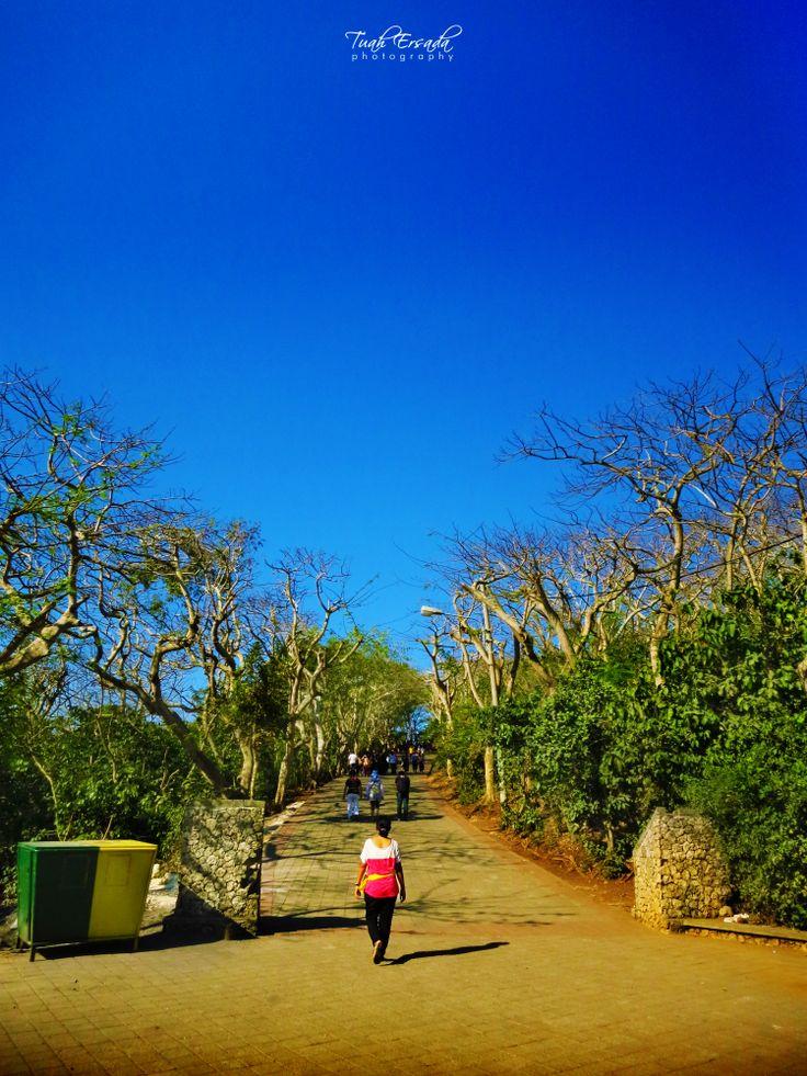 uluwatu, bali, island, woman, blue, sky, tree, nature, culture, tuah ersada, photography,