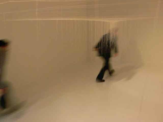 Immagine di http://pds.exblog.jp/pds/1/200705/09/00/d0119300_1352375.jpg.