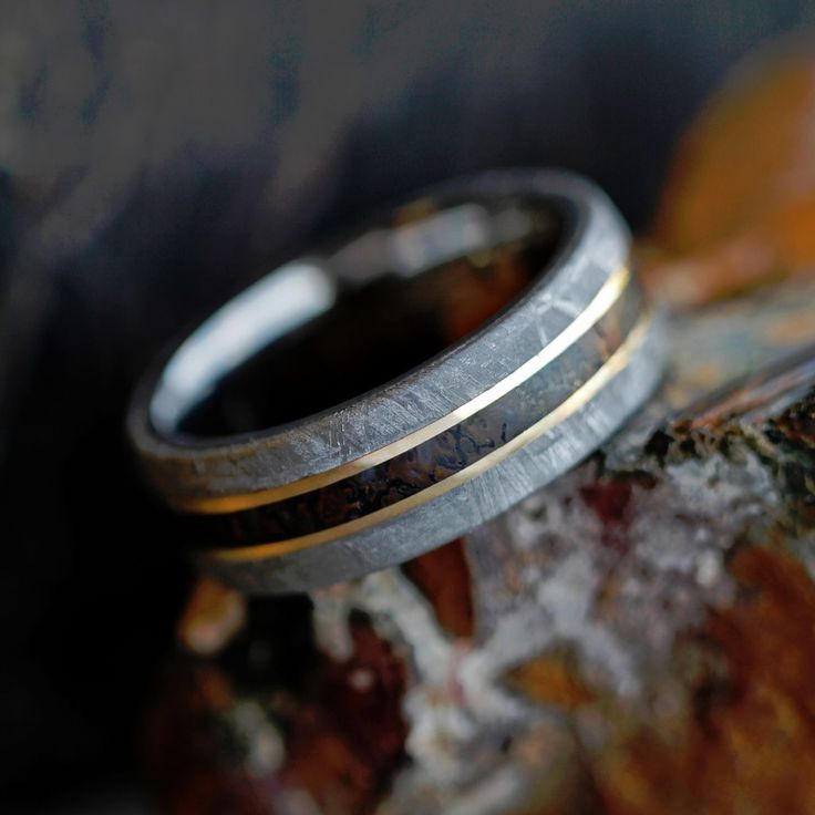Your guy is unique... his wedding band should be too. Help him pick out a wedding ring that will show off his unique personality, like this meteorite, dino bone and yellow gold men's wedding band. See more here: https://www.etsy.com/listing/290041565/dinosaur-bone-ring-meteorite-wedding?ga_search_query=dinosaur%2Bmeteorite&ref=shop_items_search_61?utm_source=Wedding-Chicks&utm_medium=Inspo-Post-3187&utm_campaign=Inspo-Post-May
