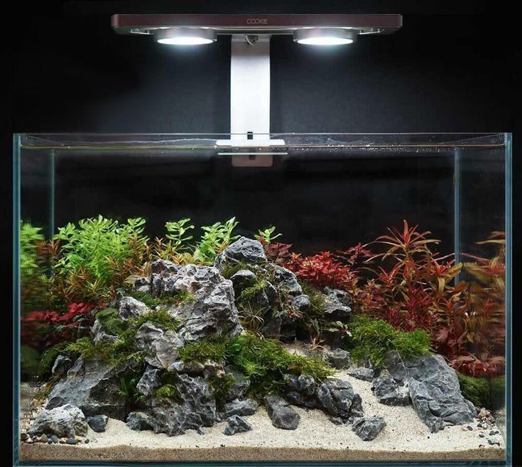 Aquascape Lighting: Aquascape Aquarium Lighting System