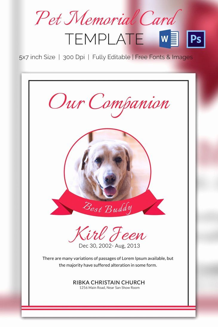 Memorial Card Templates Free Download New 73 Best Printable Funeral Program Templates Images On Peterainswo Memorial Cards Card Templates Free Card Templates