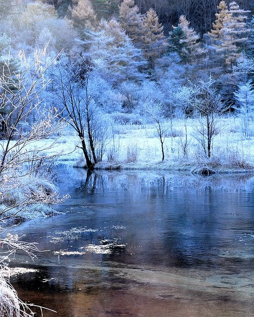 63 Best Images About Winter Scenery On Pinterest