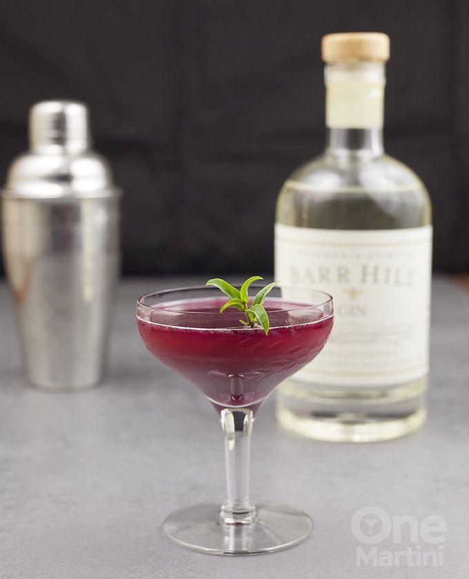 Best 25 blueberry cocktail ideas on pinterest blueberry for Vodka based summer cocktails