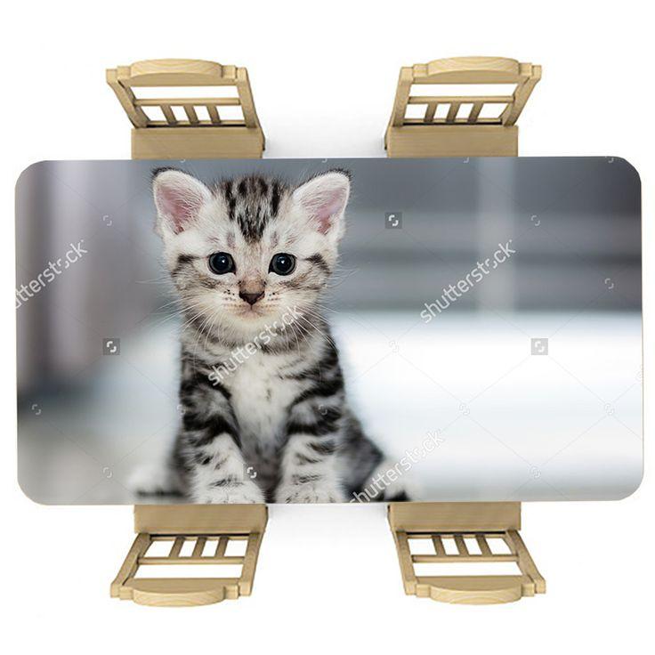 Tafelsticker Nieuwsgierige kitten | Maak je tafel persoonlijk met een fraaie sticker. De stickers zijn zowel mat als glanzend verkrijgbaar. Geschikt voor binnen EN buiten! #tafel #sticker #tafelsticker #uniek #persoonlijk #interieur #huisdecoratie #diy #persoonlijk #kitten #baby #kat #poes #lief #schattig #meisjeskamer #meidenkamer