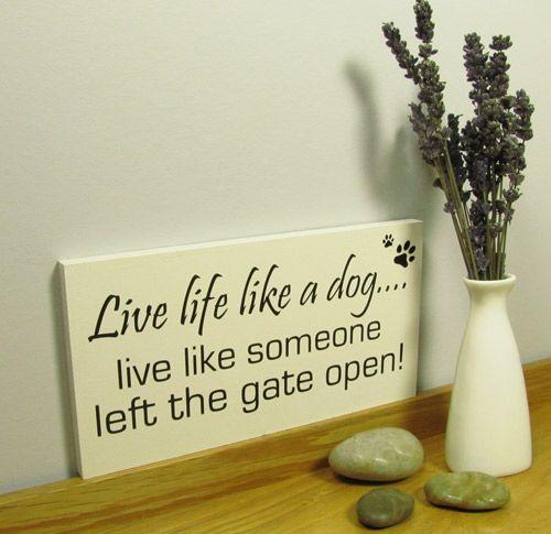 Dog sign. Handmade wall plaque.  Live life like a dog....live like someone left the gate open!