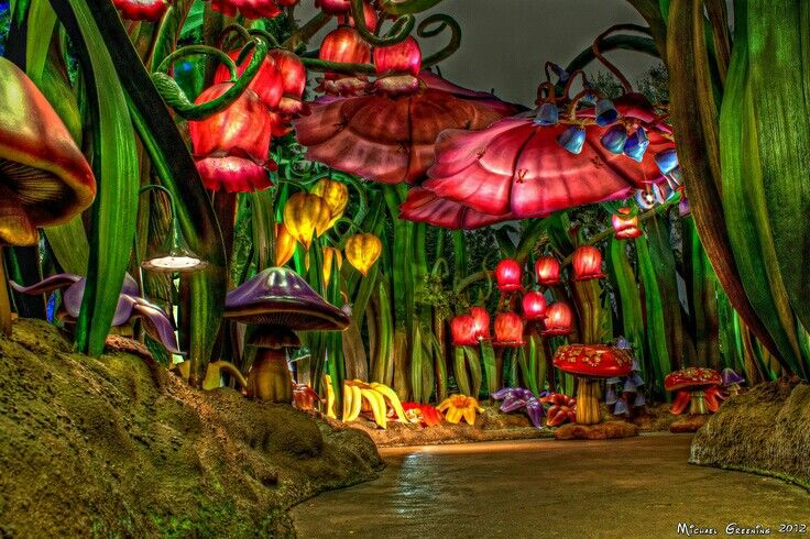 Pixie hollow at disneyland at night pure magic www for Disneyland wall mural