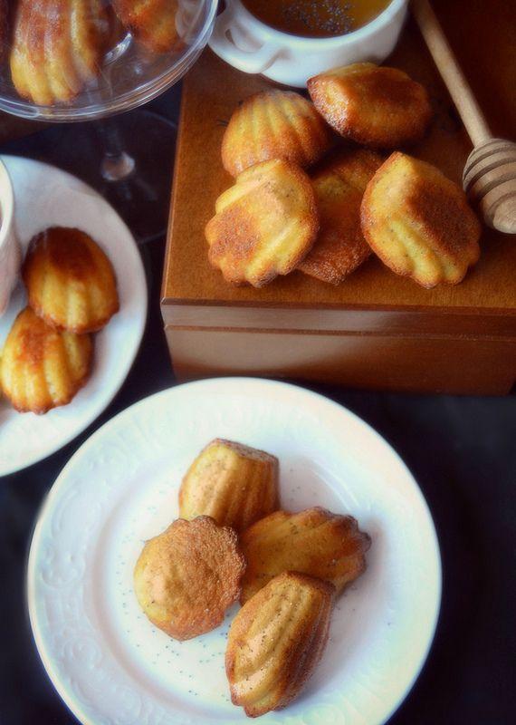 http://www.dolciagogo.it/2013/11/tea-time-madeleines-al-miele-di-acacia.html Madeleines con miele e semi di papavero