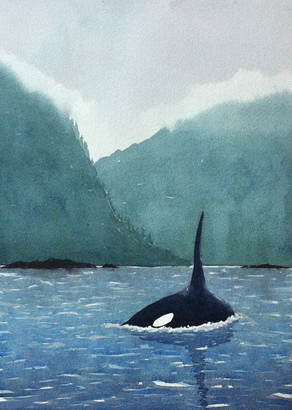 Killer whale / Orca watercolor