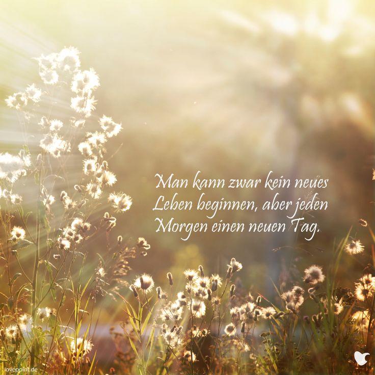 Man kann zwar kein neues Leben beginnen, aber jeden Morgen einen neuen Tag.  lovepoint.de