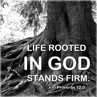 Life rooted in GOD stands firm...