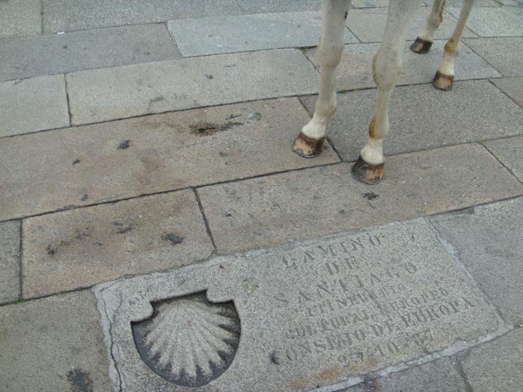 Camino de Santiago   Santiago de Compostela