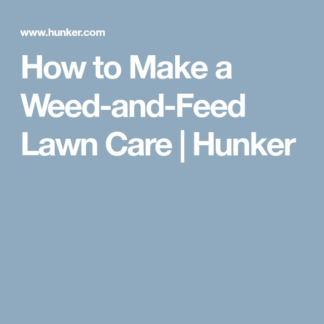 How to Make a Weed-and-Feed Lawn Care | Hunker