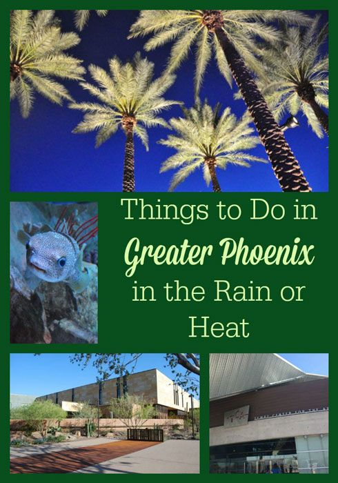 Things to Do in Phoenix in the Rain or Heat #familytravel #travel
