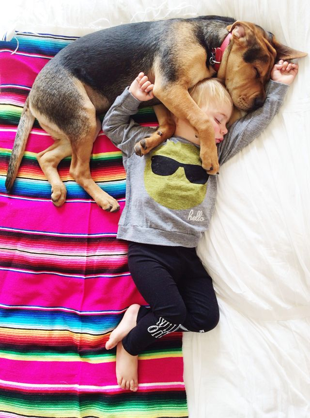 We've partnered with @Jessica Shyba to make over her children's rooms. Don't worry, we won't separate #TheoandBeau! {Click to see the before pics}: Theo Beau, Theo And Beau, Puppies, Instagram Webview, Naps Adorable, Pet, Toddlers, Separates Theoandbeau, Animal