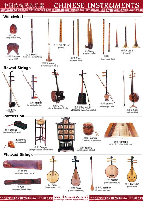 Which is the best musical instrument to learn, for a ...