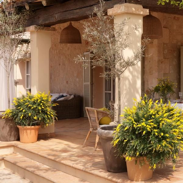 Classic Patio Ideas In Mediterranean Style: 17 Best Images About Frontyards And Porches On Pinterest