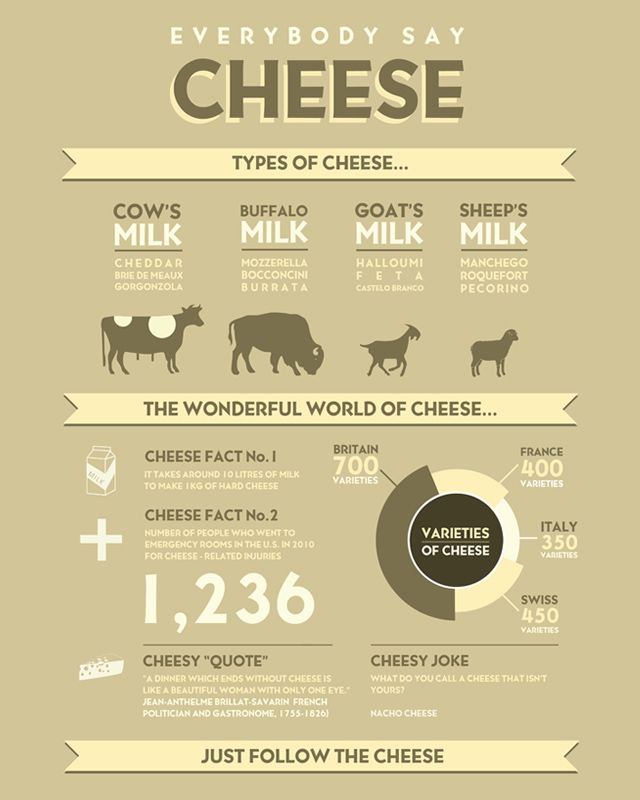 An infographic about cheese, types of cheese, from what animal the milk came from, cheese jokes and cheese quotes.