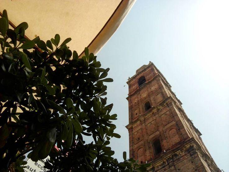 Scorci d'estate #estate #scorci #summer #sommer #città #city #stadt #urban #architecture #plant #nature #natura #campanile #clocktower #ig_italy #ig_italia #igers #igersbergamo #igersitalia #igersitaly