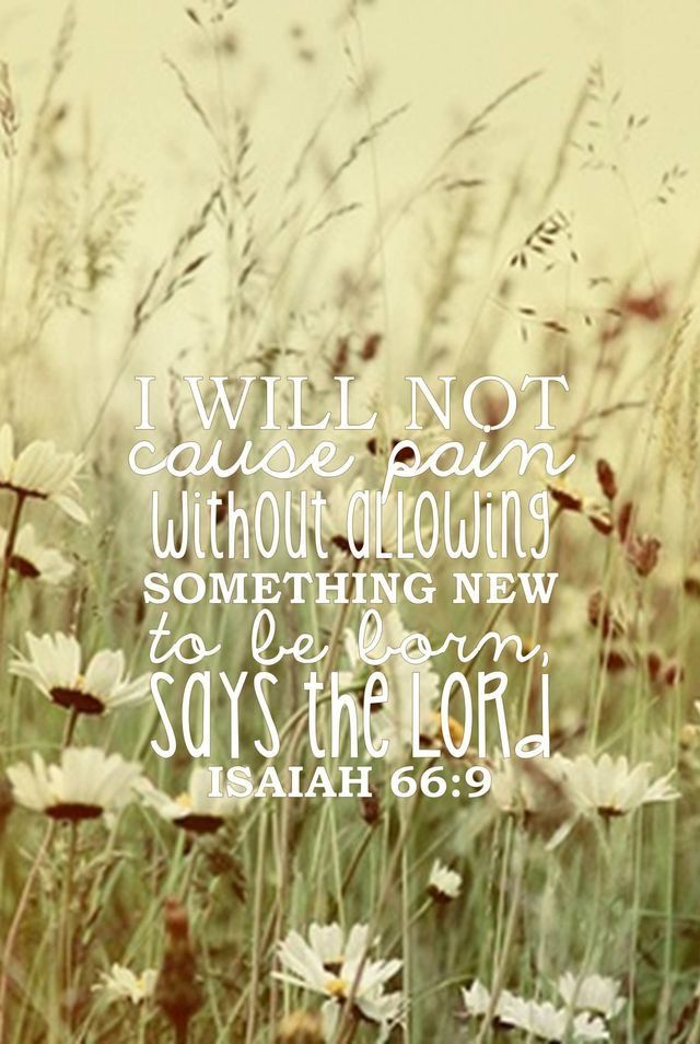 """I will not cause pain without allowing something new to be born, says the Lord."" -Isaiah 66:9"
