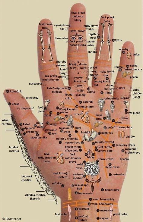 Všetko je to vo vašej dlani