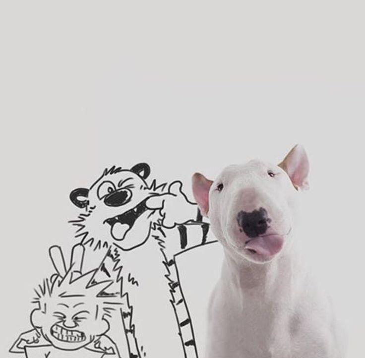 :P - Calvin & Hobbes & Jimmy Choo ~ Jimmy Choo & Raphael Mantesso